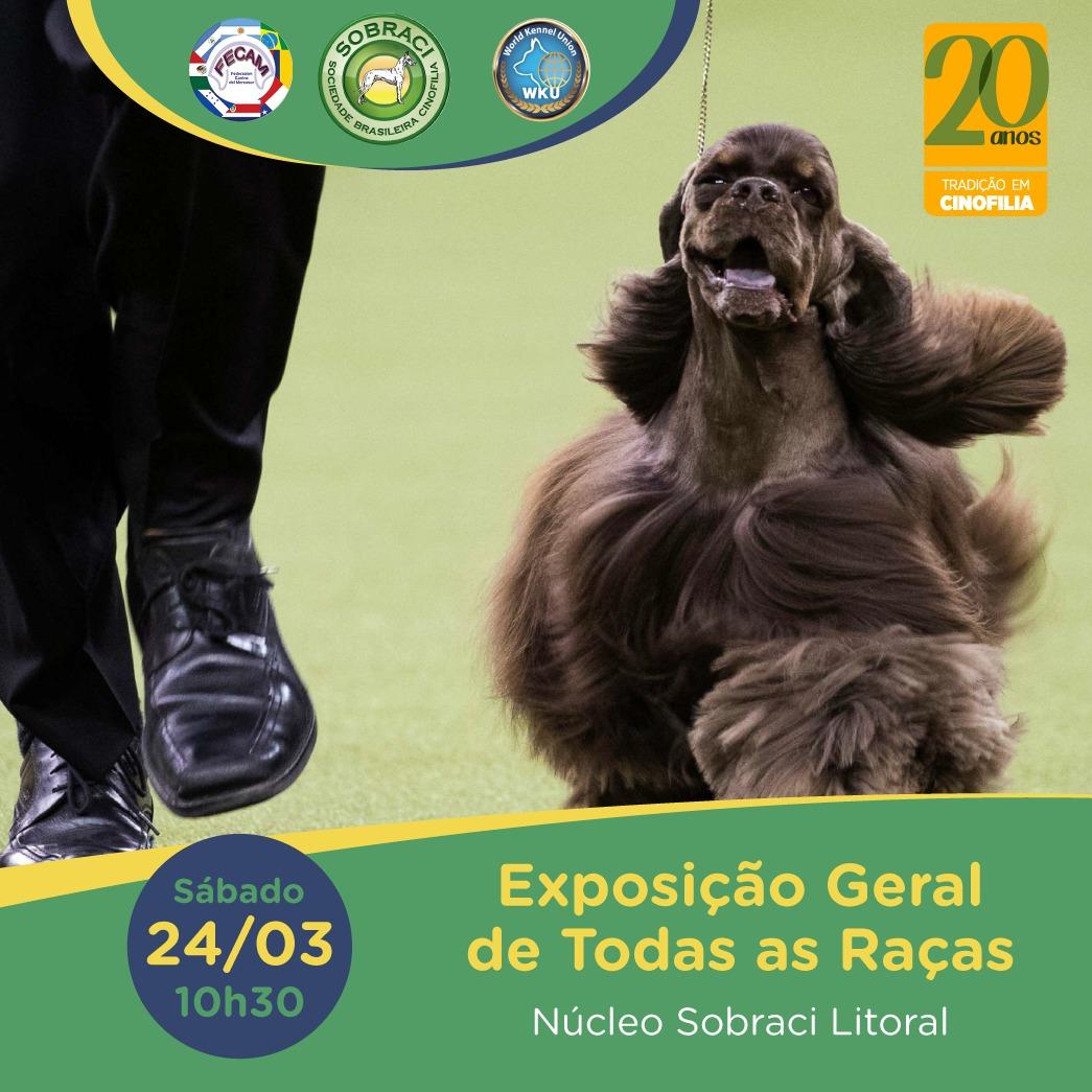 Exposição Geral Sulamericana