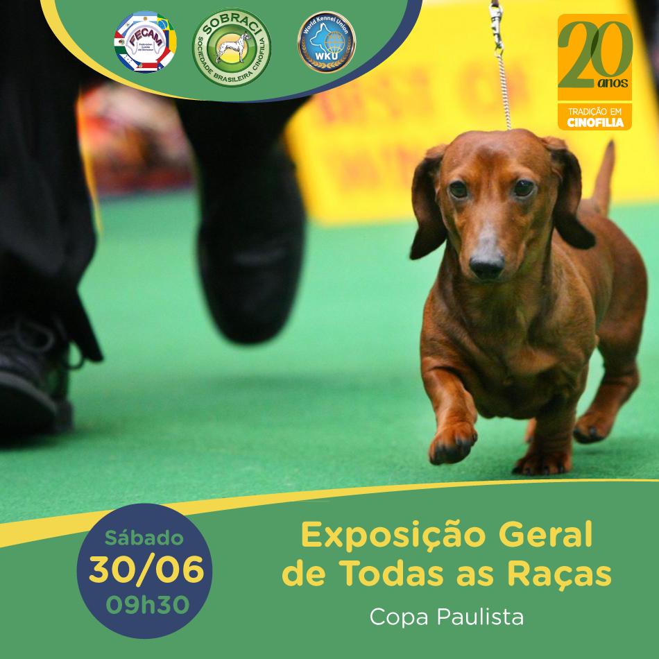 Exposição Sulamericana de Todas as Raças