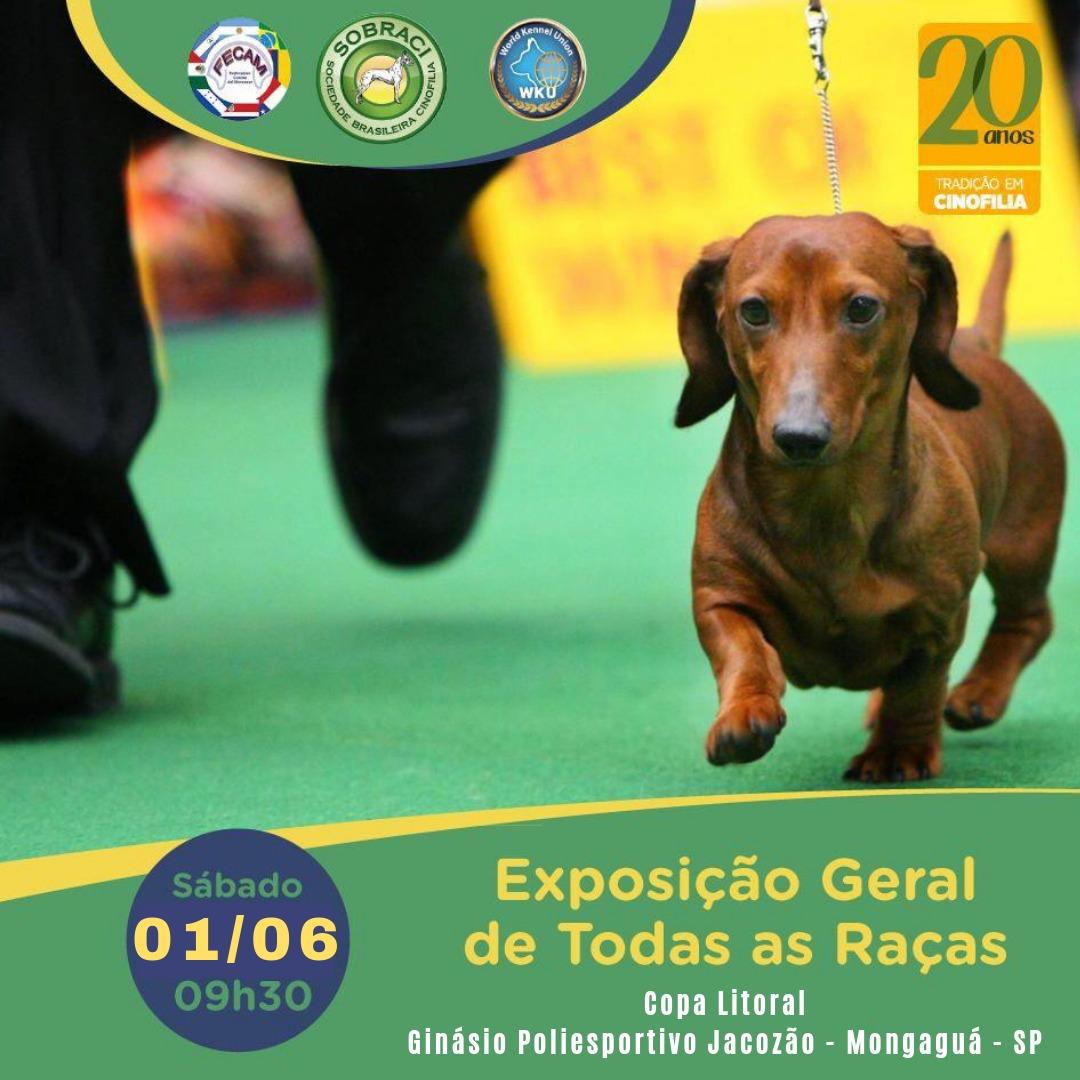 Exposição Internacional de Todas as Raças (WCACIB)