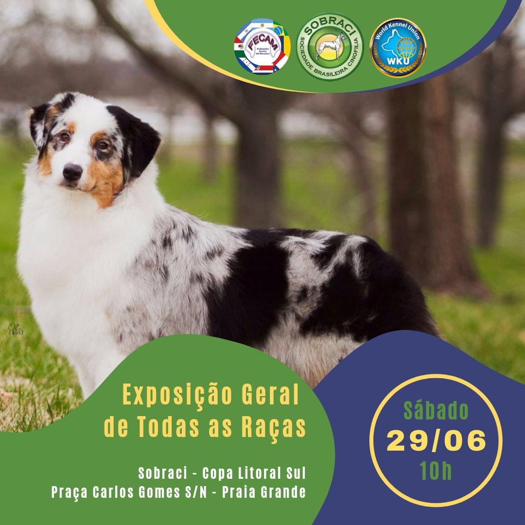 Exposição Internacional de Todas as Raças (WCACIB) e Copa Litoral