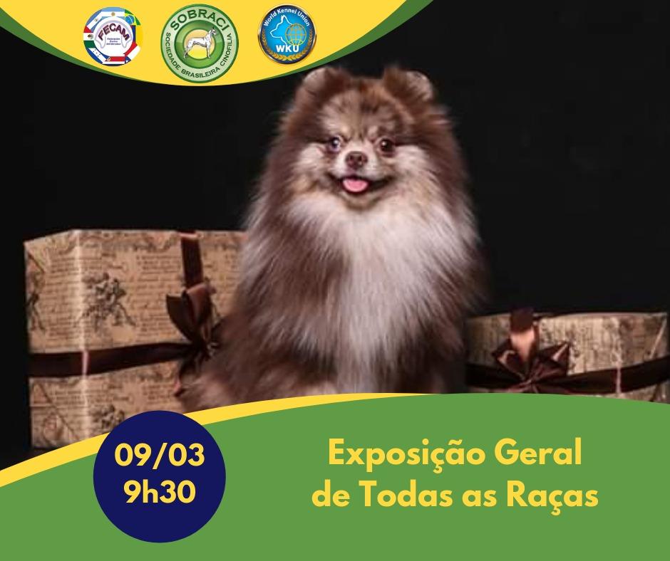 EXPOSIÇÃO SULAMERICANA GERAL DE TODAS AS RAÇAS (CACSUL E CAC)