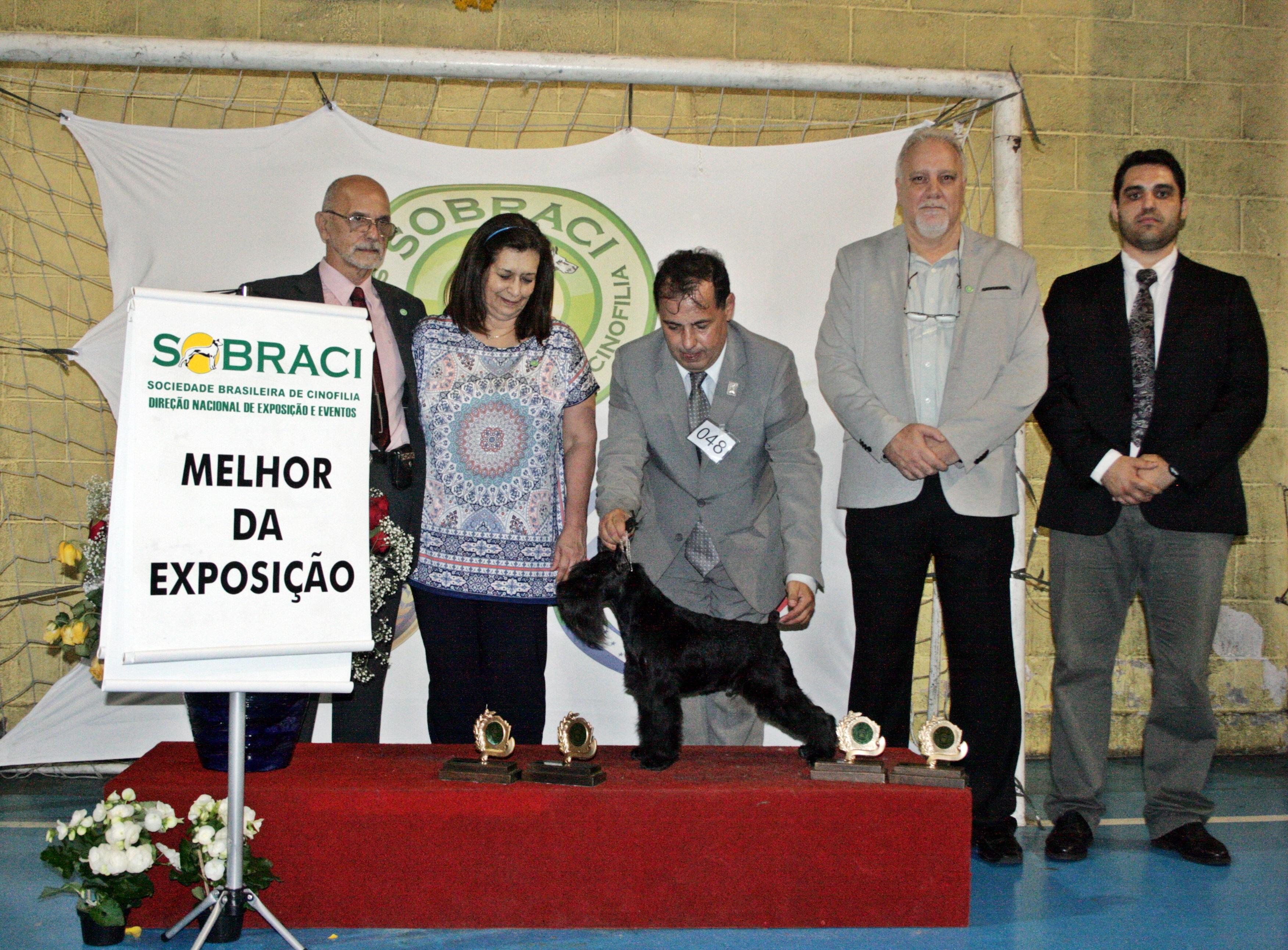 COPA MERCOSUL- FECAM